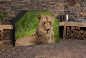 Lioness Resting Logo Grill Cover