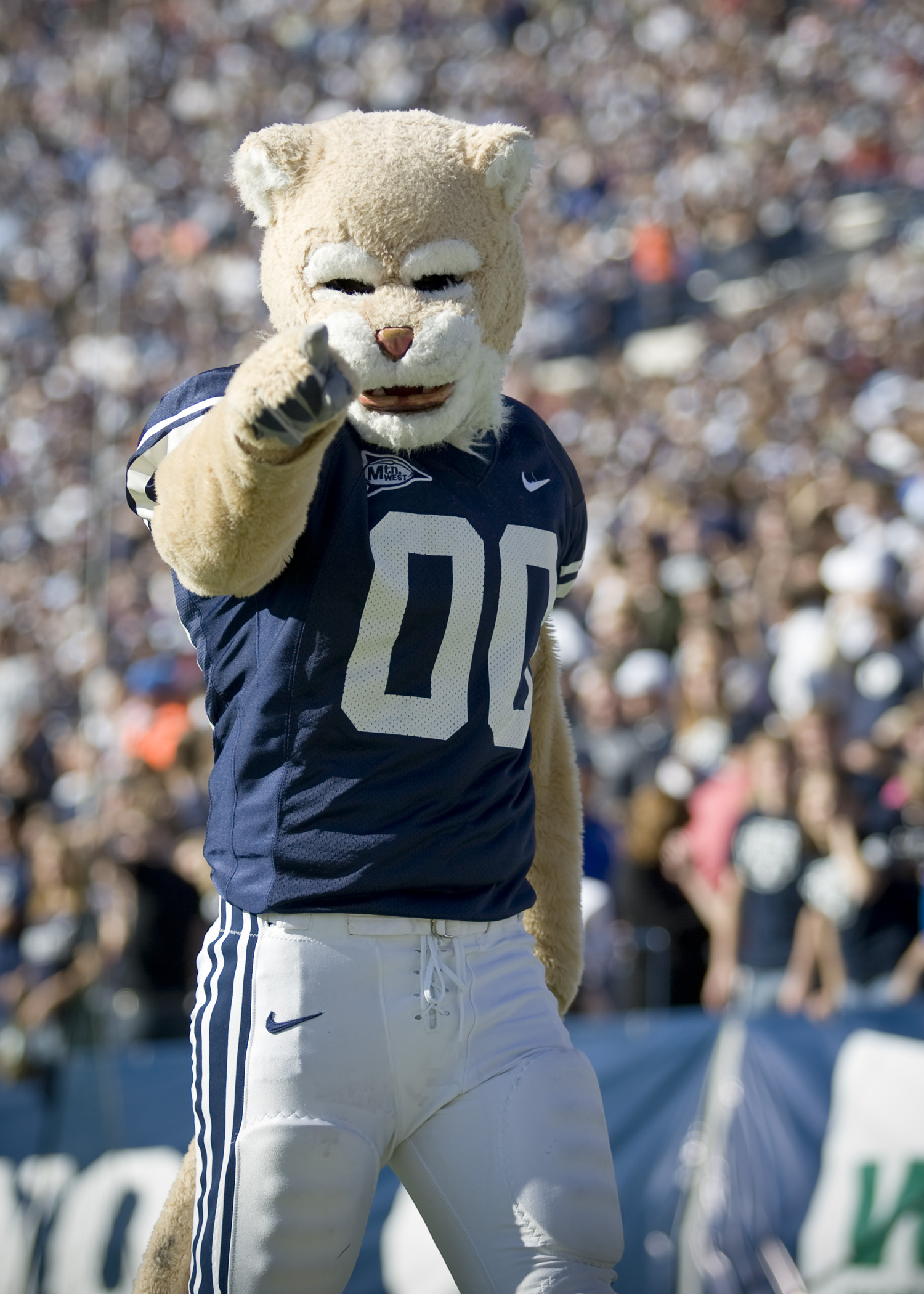 Brigham Young Cosmo the Cougar