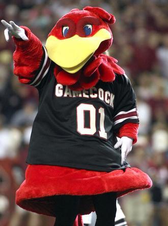 University of South Carolina Cocky Mascot