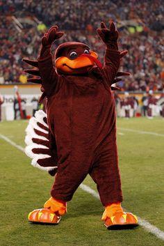 Virginia Tech HokieBird Mascot