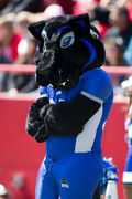 Eastern Illinois University Billy the Panther Mascot
