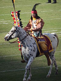 Florida State Osceola and Renegade Mascots