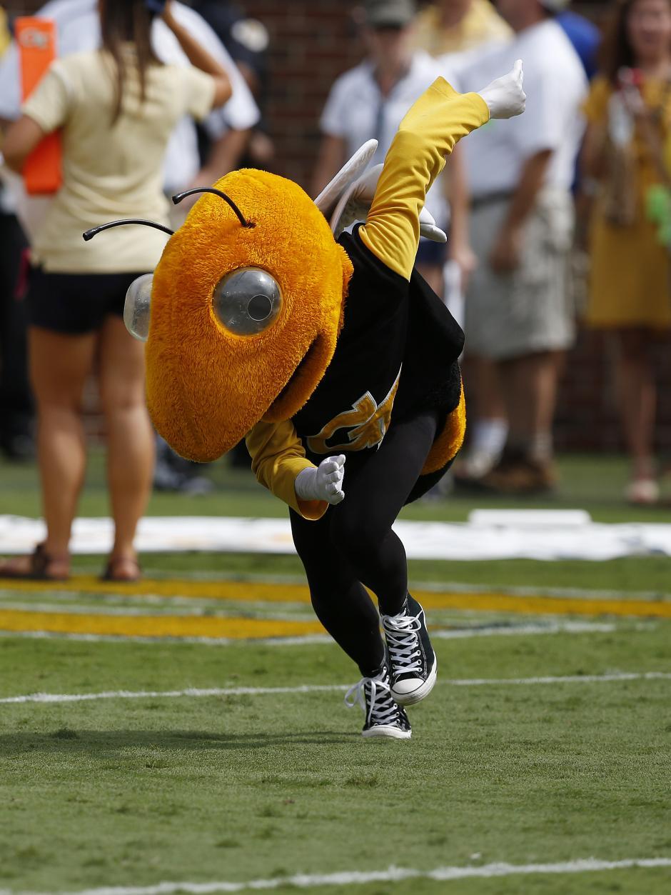 Georgia Tech Buzz the Yellowjacket Mascot