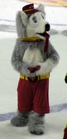 Calgary Flames Harvey the Hound Mascot