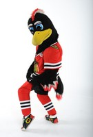 Chicago Blackhawks Tommy Hawk Mascot