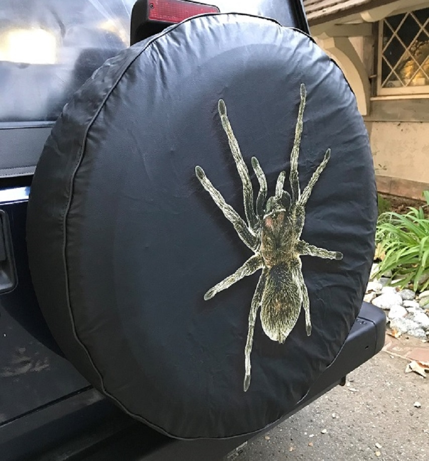 Spider Tire Cover