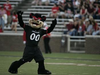Cincinnati Bearcats Mascot