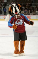 Colorado Avalanche Mascot