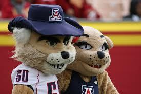 University of Arizona Wilbur Wildcat the Mascot